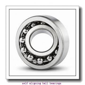 NSK 1306TN  Self Aligning Ball Bearings